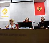 Panel HN_8